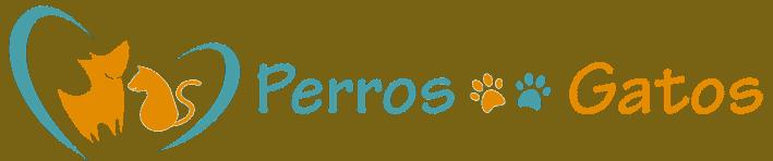 PerrosGatosOnline.com